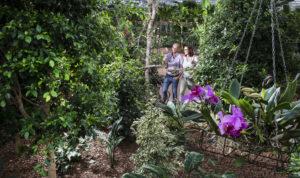 Raffeiner - Orchideenwelt